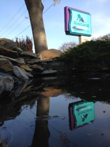 Pond and sign reflection