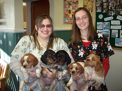 Moony-Puppies-with-Missy-and-Nicole